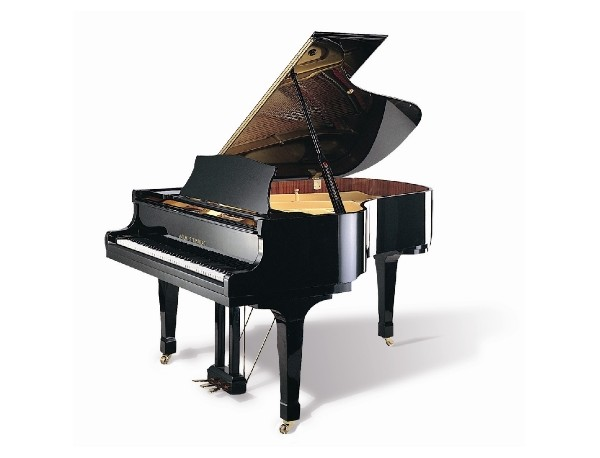 piano-a-queue-wilhsteinberg-wst-165-noir-brillant